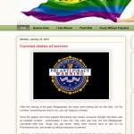 Pirate blog sites lament the passing of Megaupload.